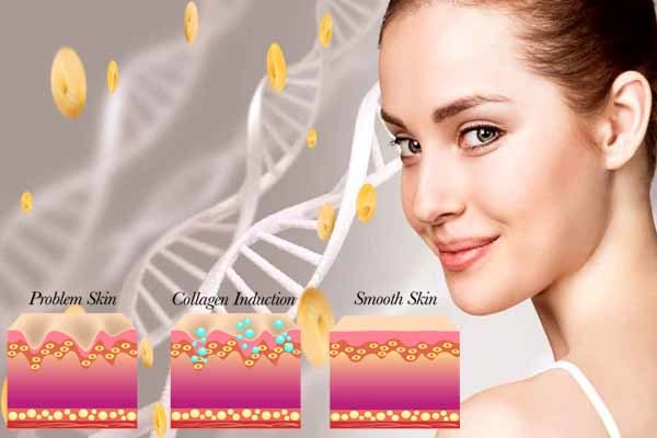 best collagen supplements curelab.co.uk